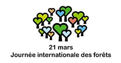 Venez fêter la Journée Internationale des Forêts avec les coopératives forestières !