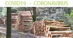 COVID19 – Les Coopératives Forestières: le bois français dans le plan de relance