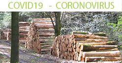 COVID19 : Les Coopératives Forestières veulent le bois français dans le plan de relance du pays