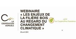 Les enjeux de la filière forêt-bois au regard du changement climatique : replay du Wébinaire LCA-UCFF