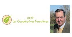 Export des bois en Chine : La solution des Coopératives Forestières