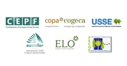 European forest owners and managers presented a joint position on the new strategy EU forest strategy